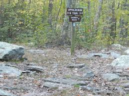 Michaux State Forest Map by Chimney Rocks Trail The Wilds Of Pennsylvania