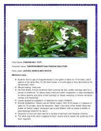 the medicinal plants