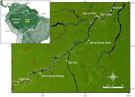 Amazon Basin Map Fig 1 Location Of Study Sites Along The Middle And Lower Madeira