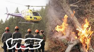 Wild Fires In Bc Videos by British Columbia Is Burning Youtube