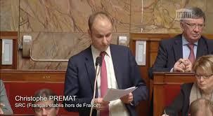 chambre de commerce à l étranger le système de représentation politique des français à l étranger