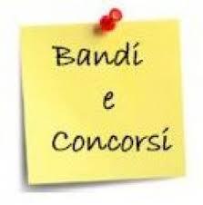 presidenza consiglio dei ministri concorsi concorsi istituto micheli bolognesi