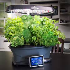 amazon com aerogarden bounty with gourmet herb seed pod kit