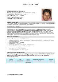 resume experience amitdhull co