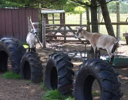 Bored At Home Create Your Own Zoo 10 Goat Playgrounds That Will Make Your Kids Jealous