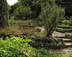 Berkeley Botanical Gardens Of California Botanical Garden Hiddensf