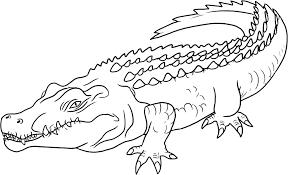 Crocodile 66 Animaux  Coloriages à imprimer