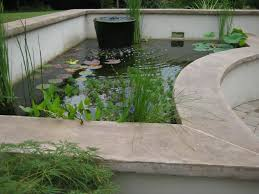 the ultimate koi pond 15 steps with pictures