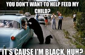 Bear Memes - black bear meme viral viral videos