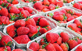 G Stige Schreibtische 400387954 Erdbeeren Saisonales Obst Jpg