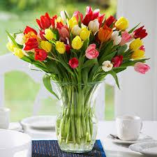 bulk flowers more flowers bulk flowers snapdragon ranunculus delphinium