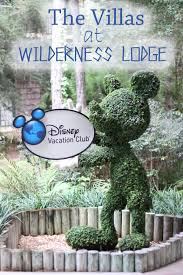 disney u0027s wilderness lodge villas sweet t makes three