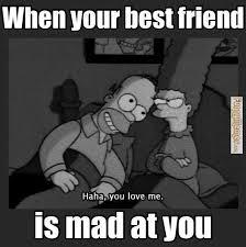Best Friends Meme - 28 most funny best friends meme pictures and images