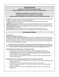 Sample Tech Resume by Director Information Technology Resume Resume For Your Job