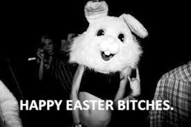 happy easter bitches pictures photos and images for