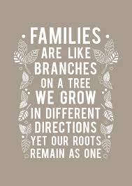 top 25 family quotes and sayings 3 family quotes sayings