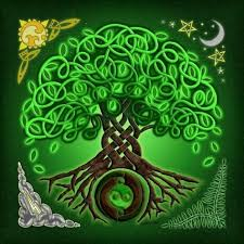 celtic mythology the tree of and other symbols we see every