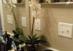 download guest bathroom decorating ideas gurdjieffouspensky com