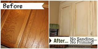 How To Paint Oak Cabinets Without Sanding Or Priming Lollypaper Com