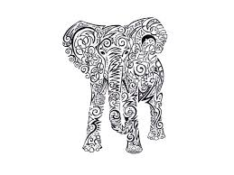 3 incredible elephant tattoo design ideas
