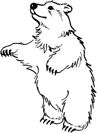 the bear stand up coloring page stitch it pinterest bears