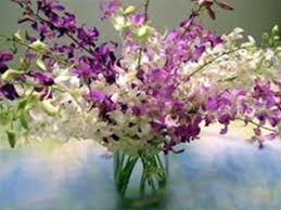 orchid bouquet dendroium orchid bouquet available in ten stem and 20 stem