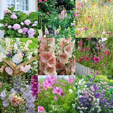 Cottage Garden Design Ideas by Great Garden Inspiration Ideas From A Visit To The Denver Lovey