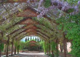 What Are Botanical Gardens Top Botanical Gardens In The Us Worth Traveling For The Flipkey
