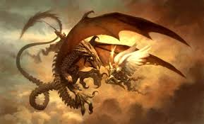 dragons fighting each other wallpaper info