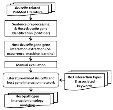 frontiers literature mining and ontology based analysis of host
