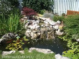 20 backyard garden ponds for all budgets pond ideas backyard