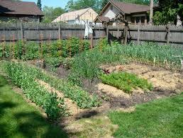 gardening for beginners vegetable flower ideas garden simple