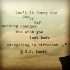 change quote cs lewis 7 lewis jpg 1 000 1 000ピクセル quotes pinterest white