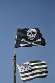 Breton Flag The 25 Best Brittany Flag Ideas On Pinterest Celtic Nations