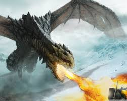 dragon fire uhd desktop wallpaper for ultra hd 4k 8k u2022 mobile