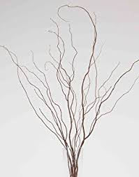 Curly Willow Branches Amazon Com 39