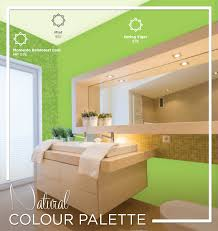 nippon paint indonesia the coatings expert natural colour palette