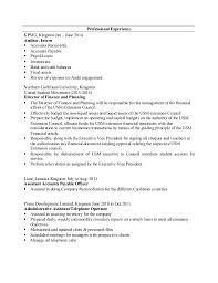 Auditor Resume Sample by It Audit Intern Resume Contegri Com