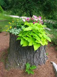 Planter Garden Ideas 19 Blazing Tree Stump Planter Ideas That Ll Impress You Balcony