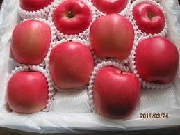 apple japan japanese mutsu apple from japan hyogo japanese mutsu apple