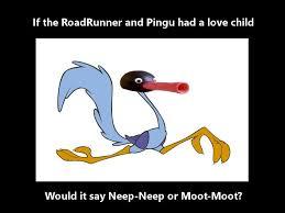 Pingu Memes - road runner and pingu genetics pingu pinterest genetics