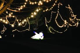 prophetstown couple make christmas merry and bright saukvalley com