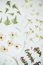pressed flowers pressed flowers decanter glasses diy jojotastic