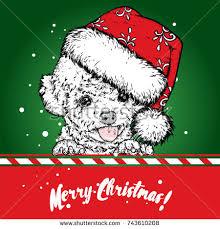 puppy in christmas hat stock vectors images u0026 vector art