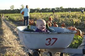 tips for a trip to grinter farms kansas city moms blog