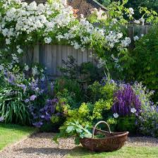 Backyard Plants Ideas Garden Ideas Designs And Inspiration Garden Fencing Fences And