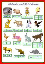 esl kids worksheets animals and their homes part 1 of 2 fully