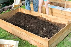create a successful raised vegetable garden with the right soil