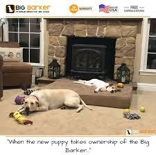 Barker Dog Bed 584 Best Dogs On Big Barker Beds Images On Pinterest