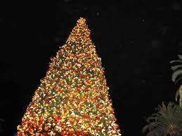 christmas pretty christmas trees traditional home amazing tree
